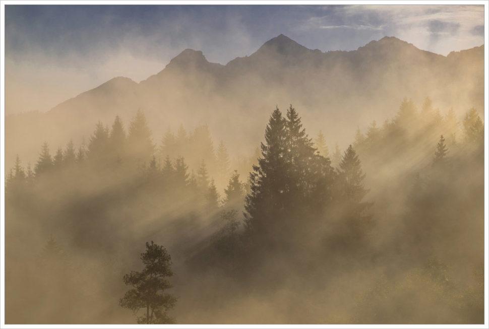 Mlhavý les - fotografický workshop Malebné podzimní Bavorsko