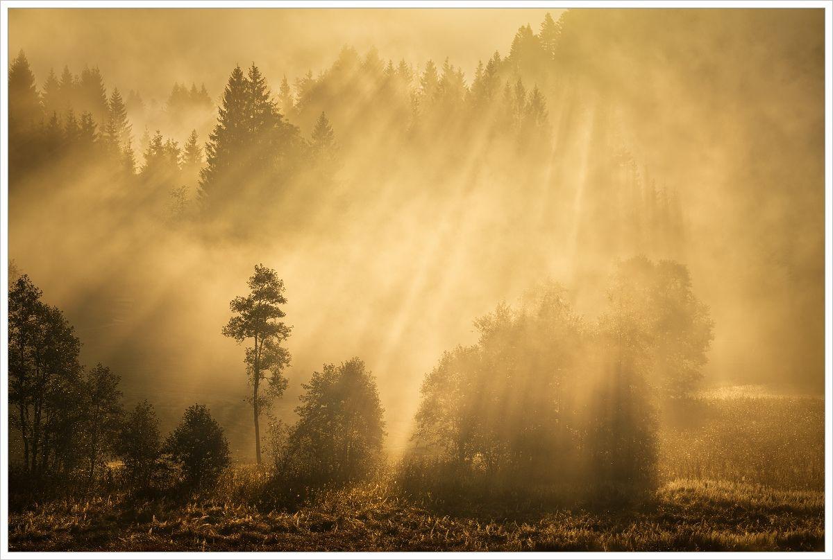 Mlhavé bavorské ráno - fotografický workshop Malebné podzimní Bavorsko