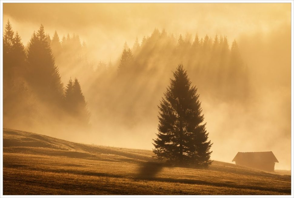 Mlhavé ráno na bavorských loukách - fotografický workshop Malebné podzimní Bavorsko