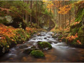 Nabídka fotocest aneb fotografický workshop Podzimní Českosaské Švýcarsko
