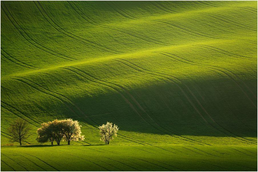 Nabídka fotocest aneb fotografický workshop Romanticky zvlněná Jižní Morava