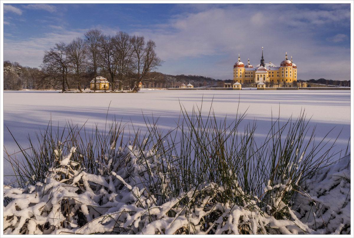 Zima vokolí Moritzburgu - fotografický workshop Drážďany, Moritzburg aMíšeň