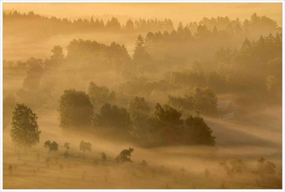 Ranní mlha v Českém Švýcarsku - fotografický workshop Podzimní Českosaské Švýcarsko