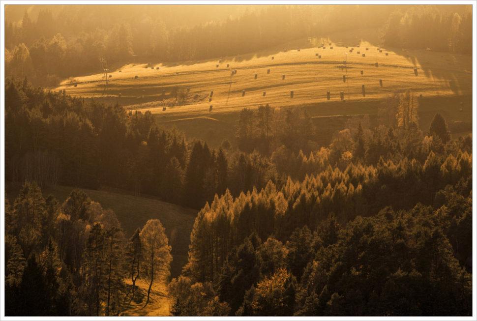 Lesy a pastviny Českého Švýcarska - fotografický workshop Podzimní Českosaské Švýcarsko