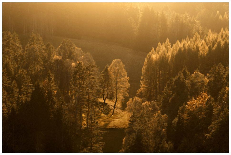 Protisvětlo v krajině - fotografický workshop Podzimní Českosaské Švýcarsko