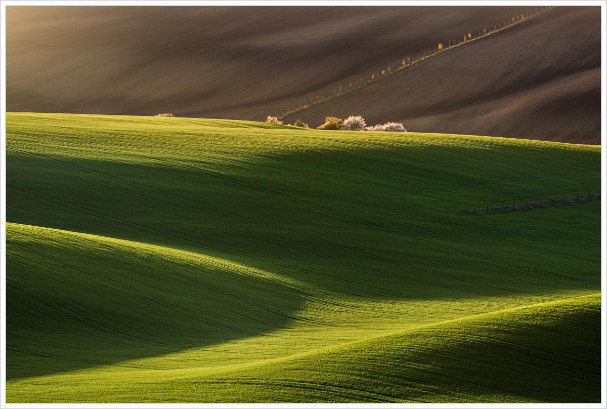Fotogenická krajina Jižní Moravy - fotografický workshop Romanticky zvlněná Jižní Morava