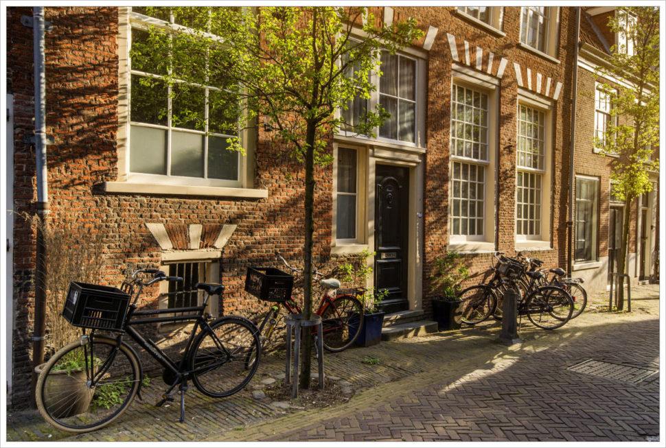 Jízdní kola je neoddělitelná součást Holandska - fotografický workshop Rozkvetlé jarní Holandsko