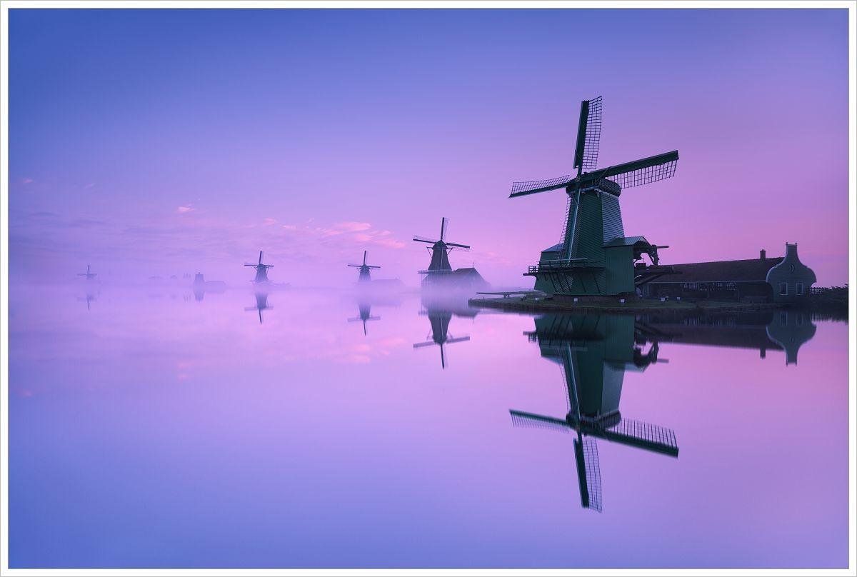 Řada větrných mlýnů vZaanse Schans - fotografický workshop Rozkvetlé jarní Holandsko