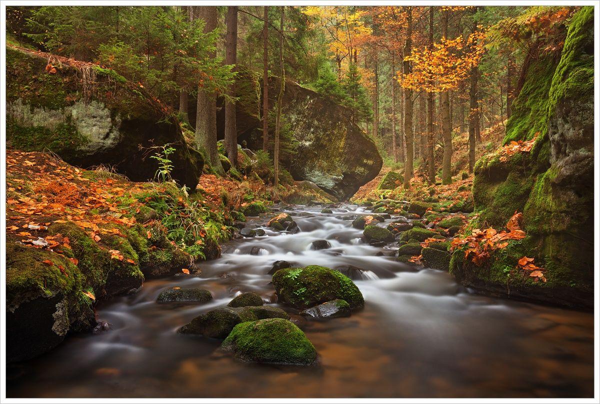 Podzimní Kyjovské údolí - fotografický workshop Podzimní Českosaské Švýcarsko
