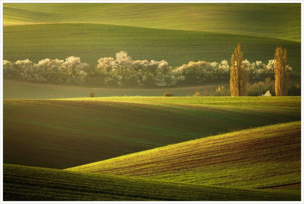 Strážci polí - fotografický workshop Romanticky zvlněná Jižní Morava