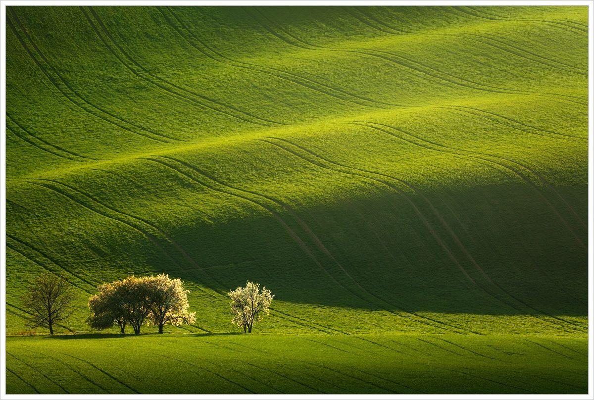 Moravské vlny - fotografický workshop Romanticky zvlněná Jižní Morava