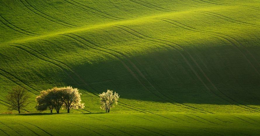 Fotografický workshop Romanticky zvlněná Jižní Morava