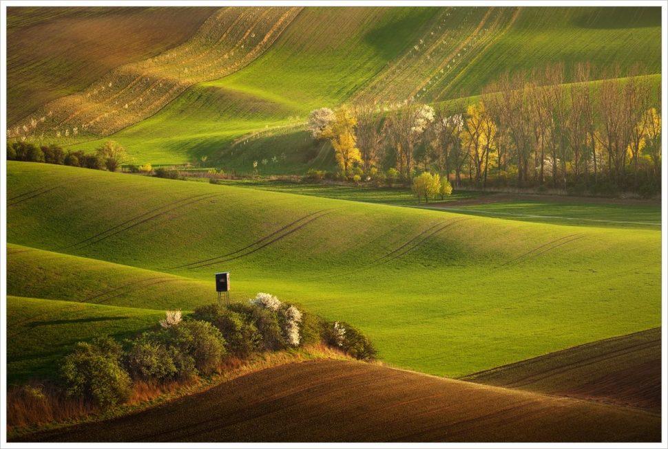 Podvečer ve zvlněných polích - fotografický workshop Romanticky zvlněná Jižní Morava