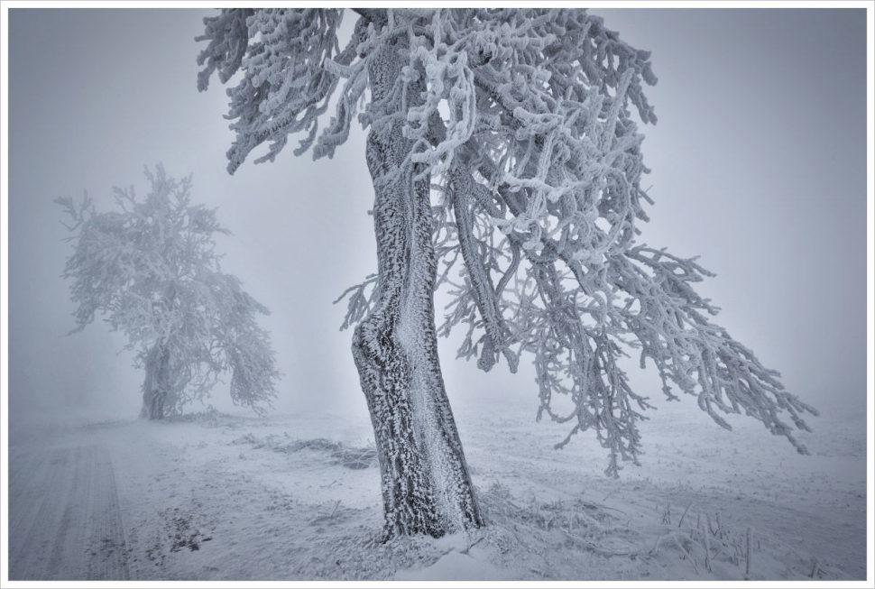 Zimní Krušné hory - fotografický workshop Labské pískovce aKrušné hory