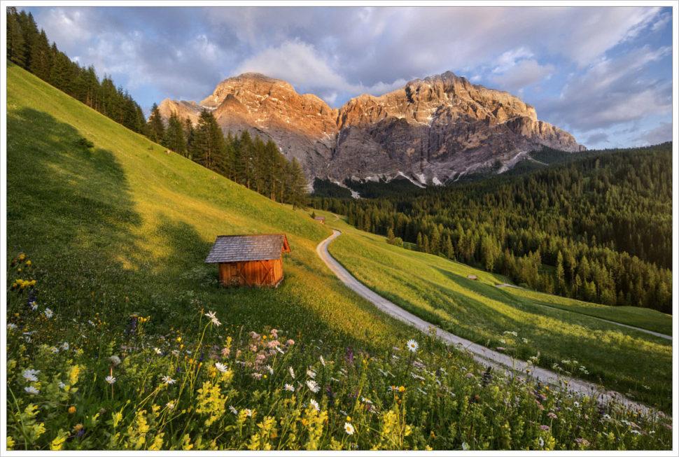 Rozkvetlé letní louky vúdolí La Valle - fotografický workshop Rozkvetlé letní Dolomity