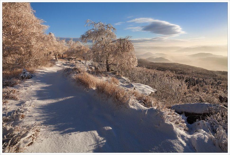 Z víkendové procházky poDěčínském Sněžníku - fotografický workshop Labské pískovce aKrušné hory