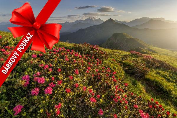 Dárkový poukaz nafotografický workshop Rozkvetlé letní Dolomity