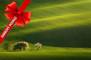 Dárkový poukaz na fotografický workshop Romanticky zvlněná Jižní Morava