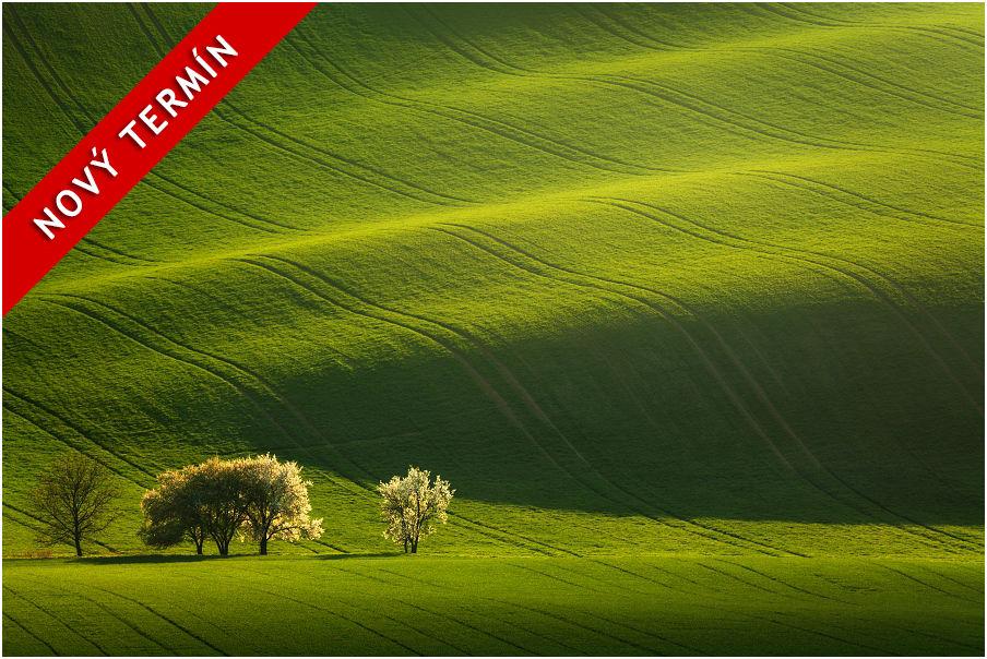 Nabídka fotoworkshopu aneb fotografický workshop Romanticky zvlněná Jižní Morava