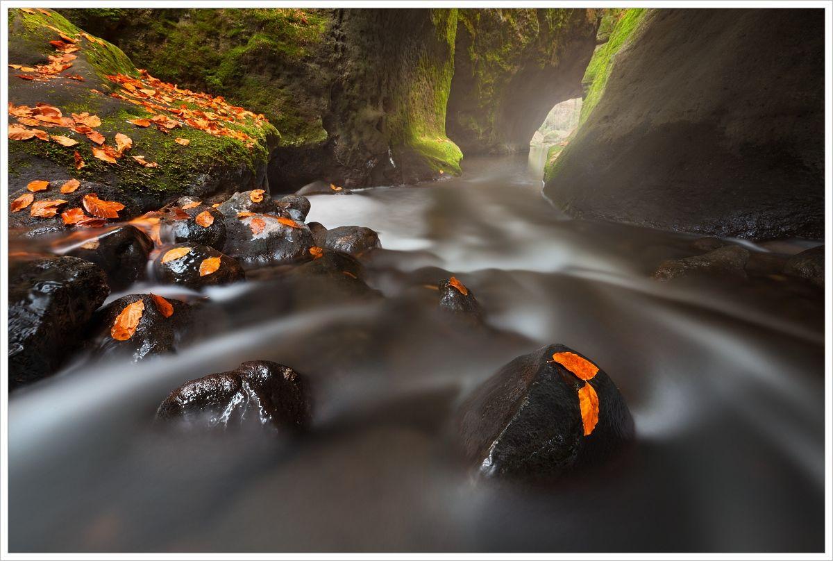 České Švýcarsko-podzimní řeka spískovcovou průrvou