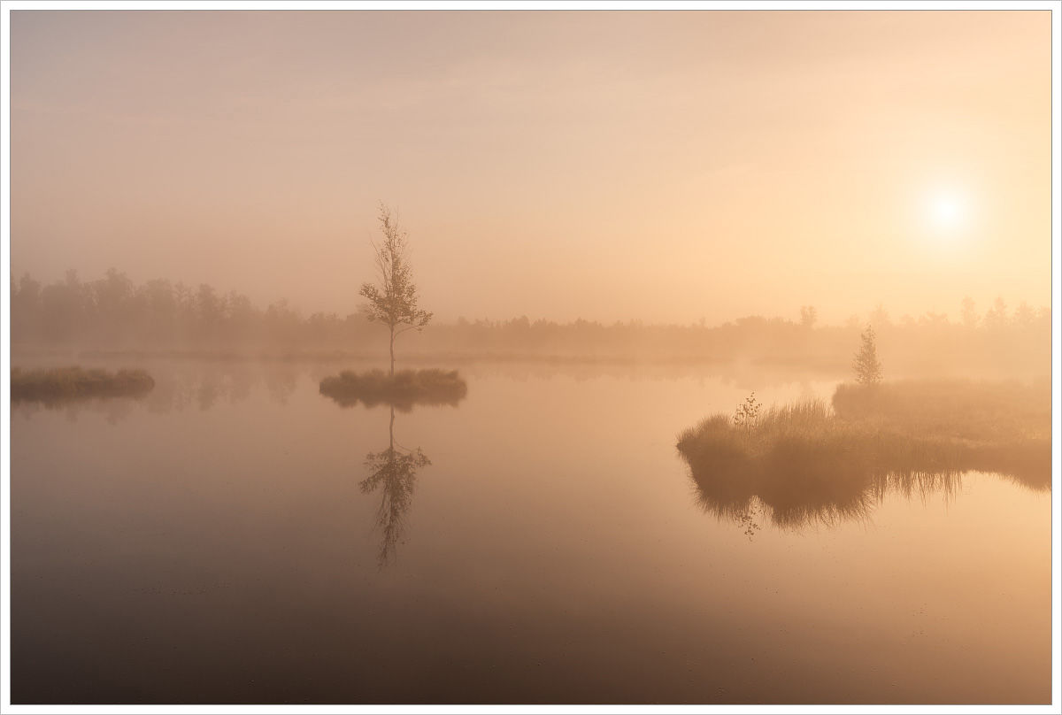 Chalupsá slať vranním světlu - fotografický workshop Tajuplná letní Šumava