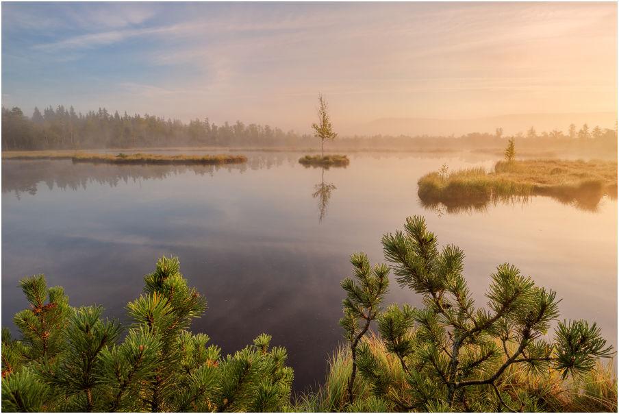 Nabídka fotocest aneb fotografický workshop Tajuplná letní Šumava