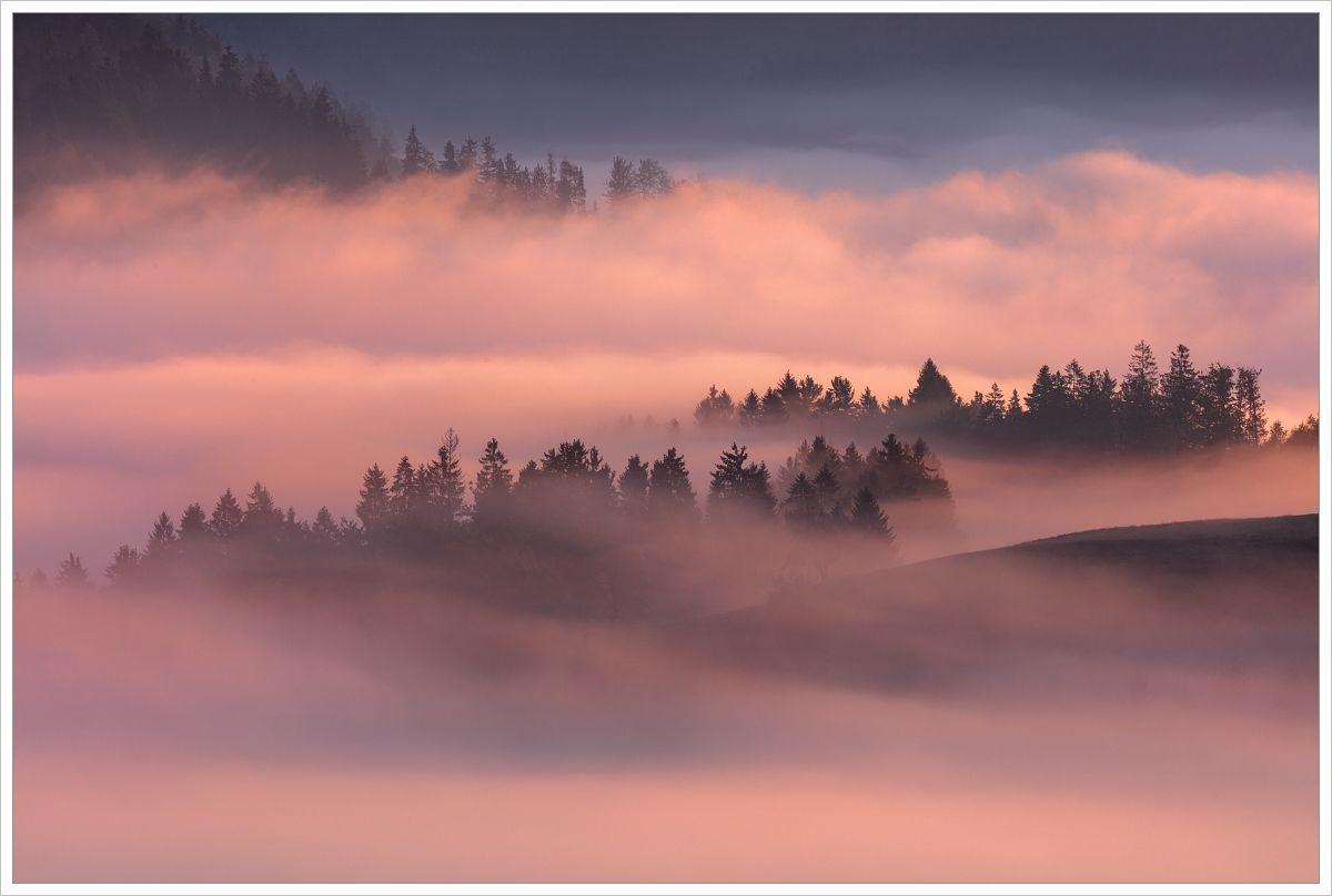 Mlhavé ráno poblíž jezera Bohinj - fotografický workshop Pohádkové podzimní Slovinsko