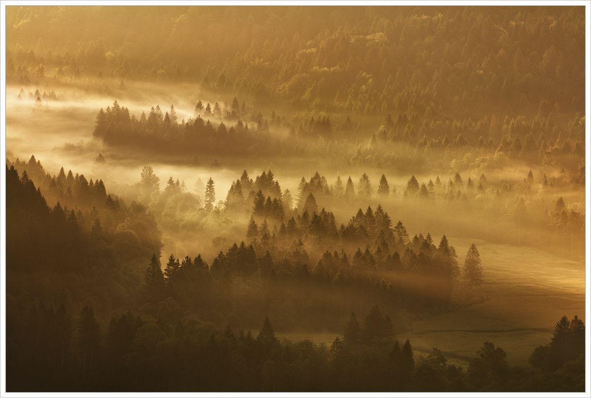 Mlhavé údolí vJulských Alpách - fotografický workshop Pohádkové podzimní Slovinsko